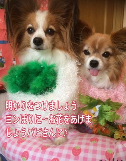 fc2blog_20160225195434a4b.jpg