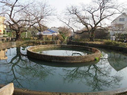 1216-19f.jpg