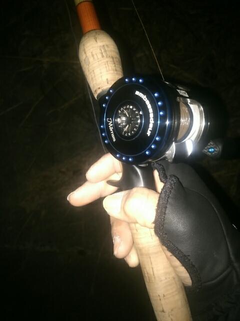 初ナマズ釣行