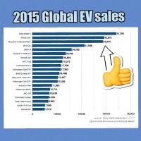 世界EV販売台数 ランキング2015