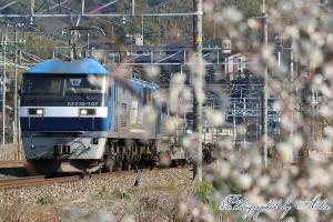 1055レ(=EF210-147牽引)