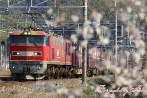 3096レ(=EF510-18牽引)