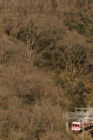 2016/1/9 神戸電鉄 鵯越