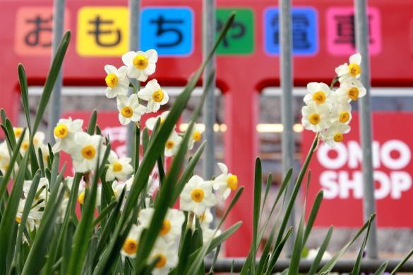 2009年2月 和歌山電鐵貴志川線 貴志