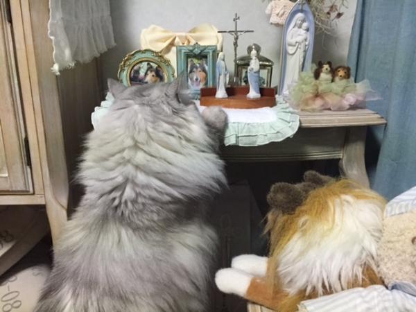 IMG_2193祭壇