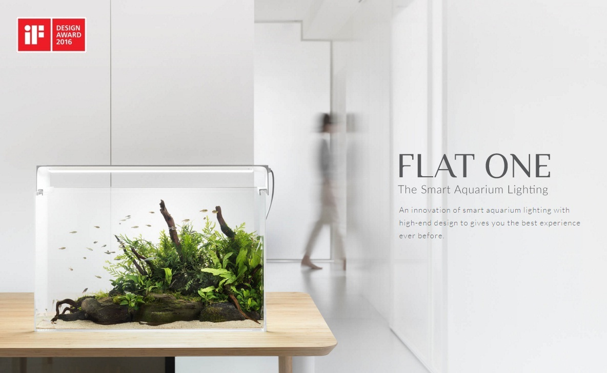 flat1_13.jpg