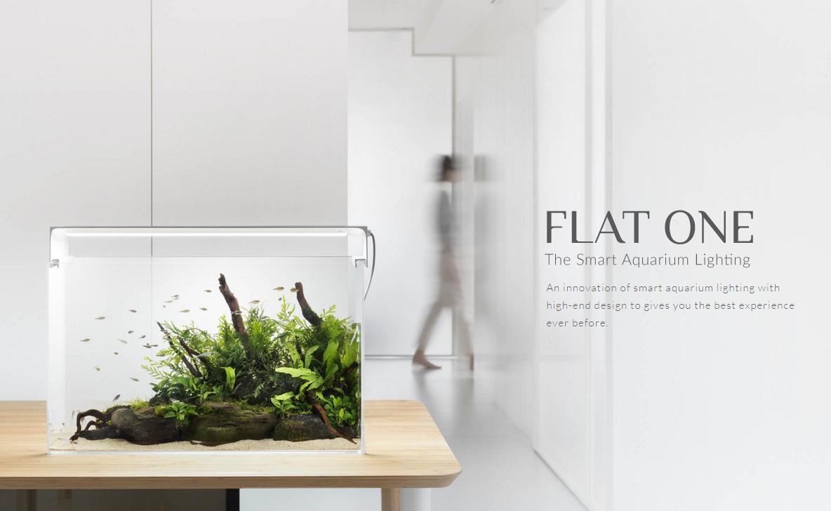 flat1_7.jpg