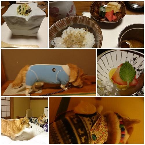 絆 夕食3