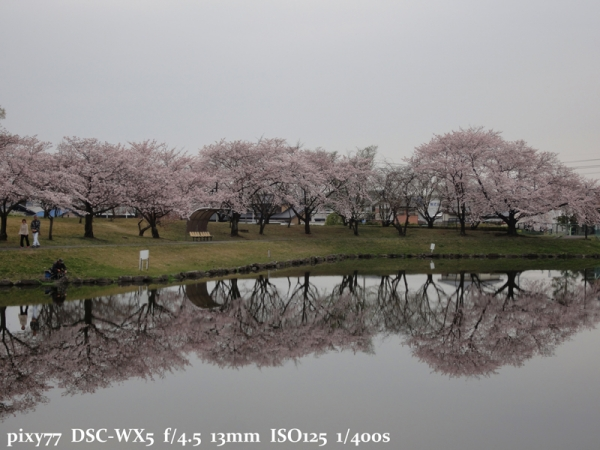 DSC00368.jpg