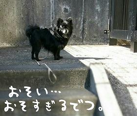 2016-03-02_13_44569.jpg
