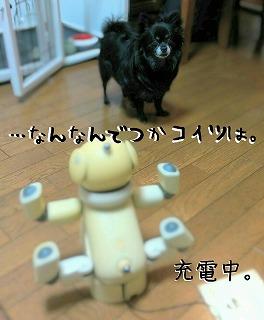 2016-03-05_23_44716.jpg