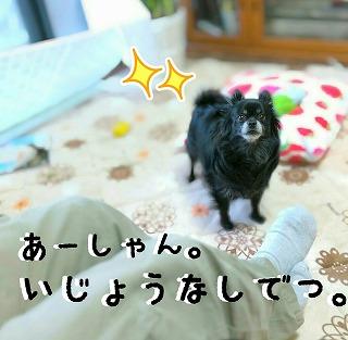 2016-03-09_14_44815.jpg