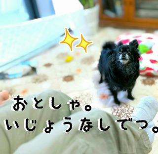 2016-03-09_14_44816.jpg