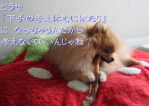 blog20160222-3.jpg