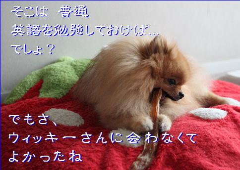 blog20160224-8a.jpg