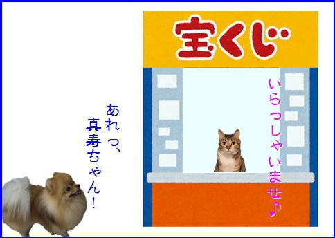 blog20160309-5.jpg