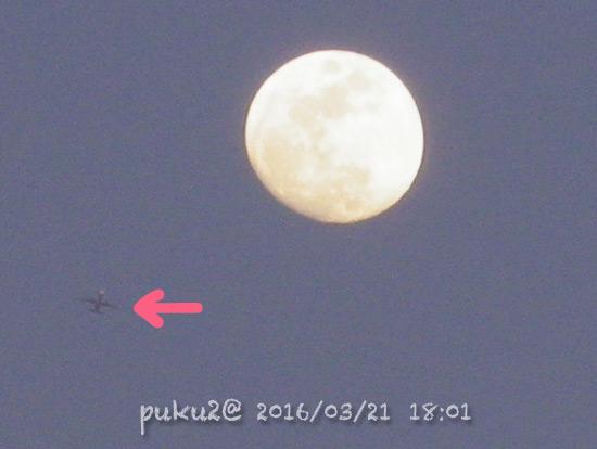 moon16-03-21-02.jpg