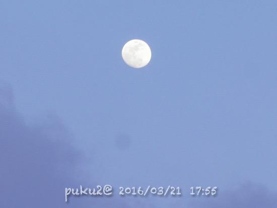 moon160321-3.jpg