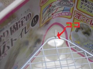 fukahiro-3.jpg