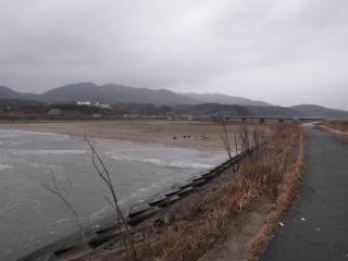 2015年03月01日 小泉3