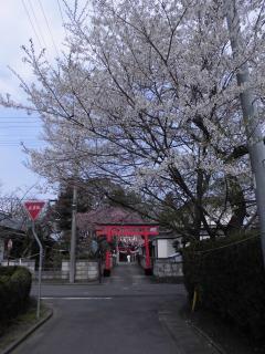2015年04月19日 金ヶ崎04