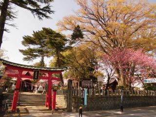 2015年04月25日 日枝神社07