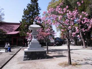 2015年04月25日 日枝神社08