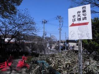 2015年04月25日 日枝神社09