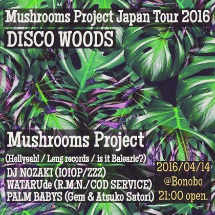 20160414mushrooms project