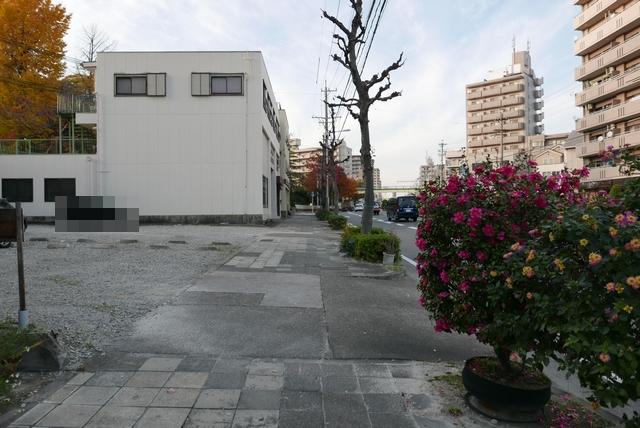 bering plant033