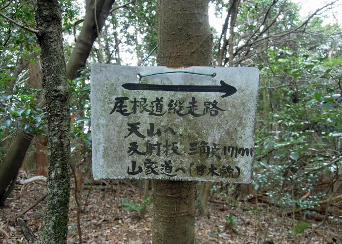 2015,12,26砥上岳,宮地岳-31