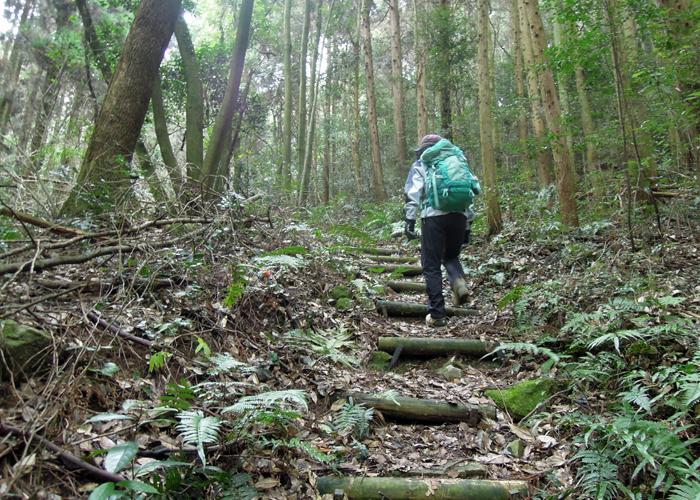2015,12,26砥上岳,宮地岳-26