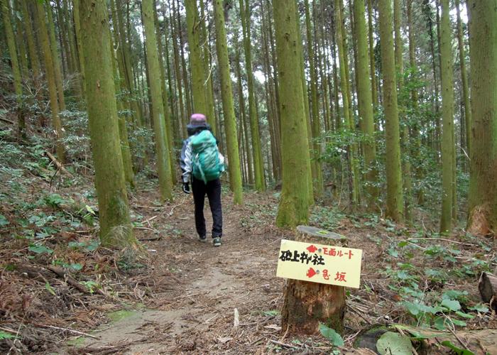 2015,12,26砥上岳,宮地岳-18