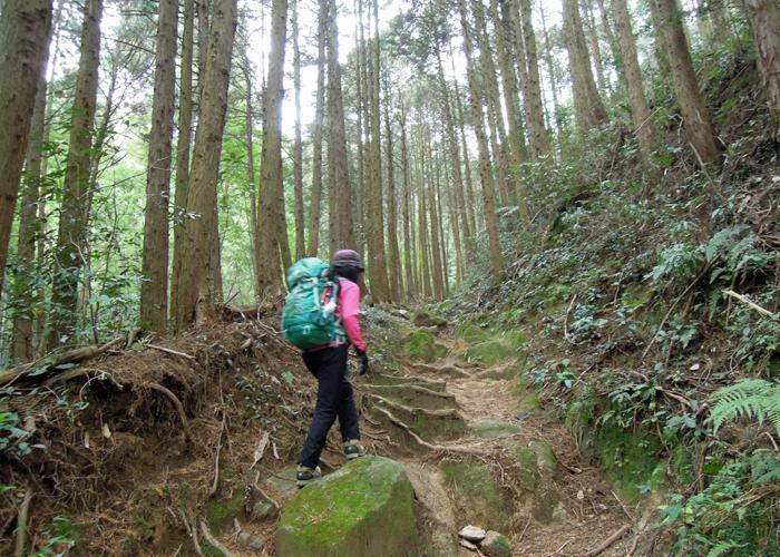 2015,12,26砥上岳,宮地岳-13