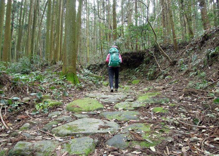 2015,12,26砥上岳,宮地岳-12