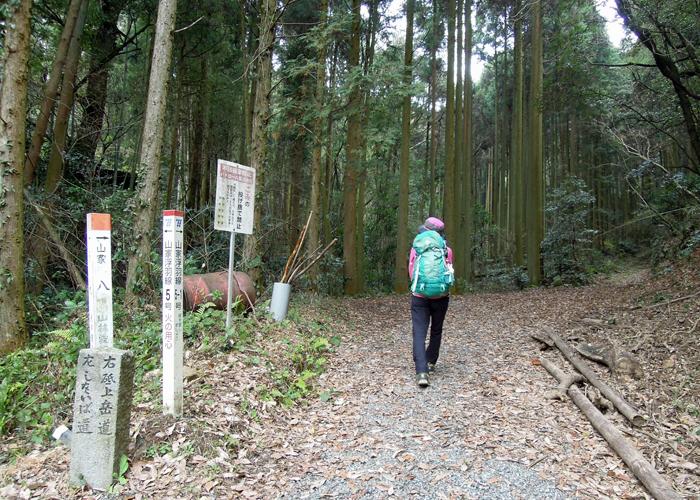 2015,12,26砥上岳,宮地岳-11