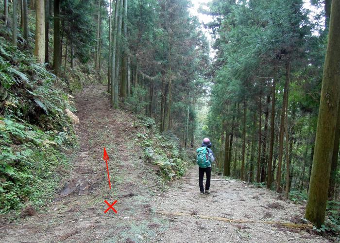2015,12,26砥上岳,宮地岳-5