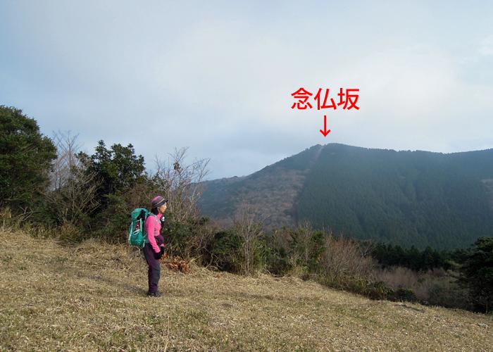 2016,1,3福智縦走-18