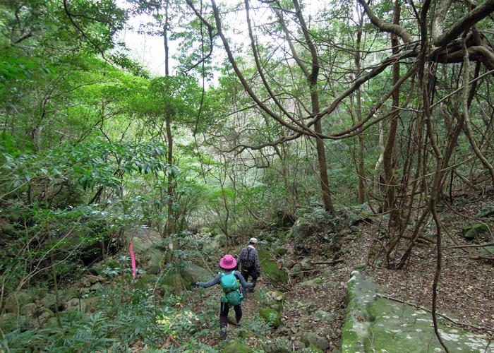 2016,1,10双石山-42