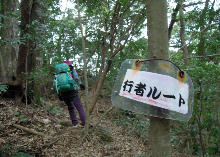 2016,1,10双石山-165