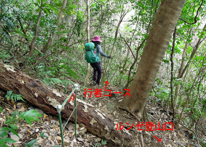 2016,1,10双石山-14