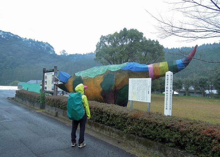 2016,1,11花切山-25