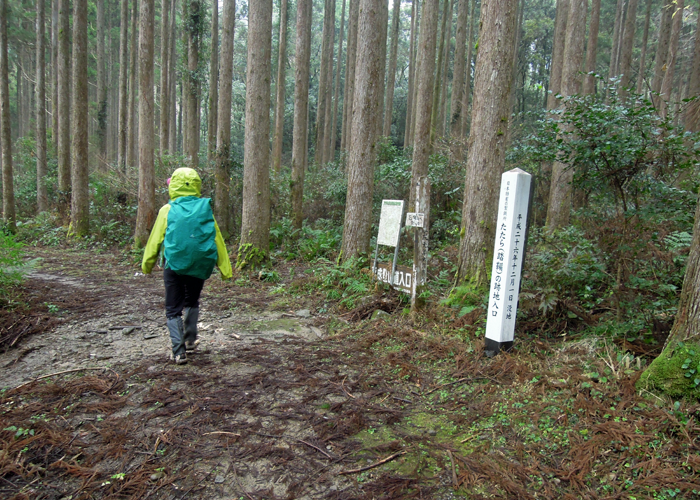 2016,1,11花切山-23