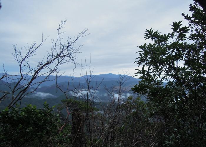 2016,1,11花切山-15