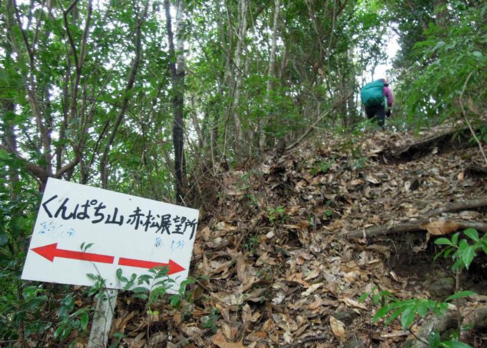 2016,1,11花切山-9