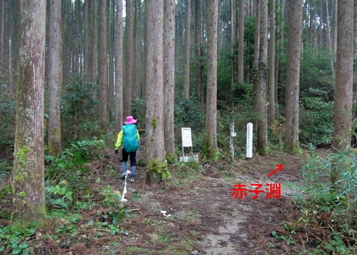 2016,1,11花切山-3