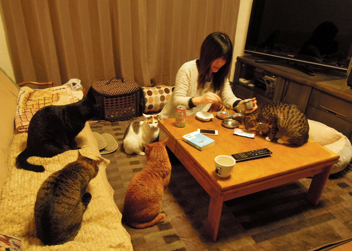 2016,2,14猫5