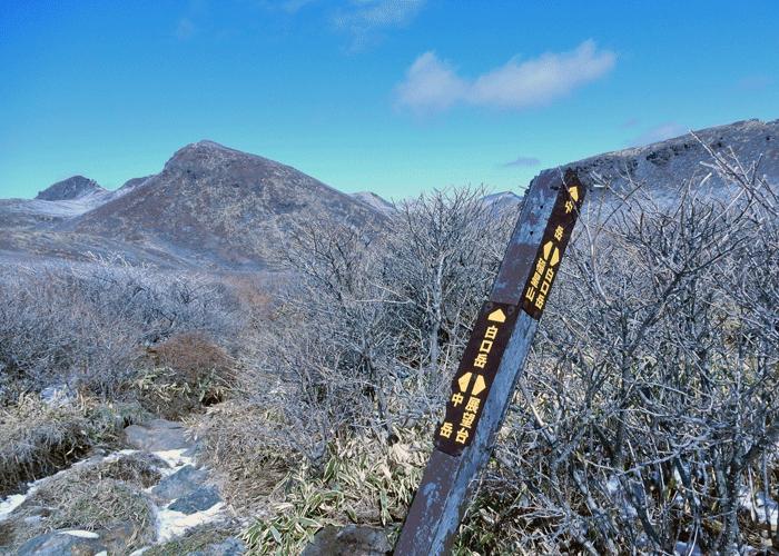 2016,3,12くじゅう-13