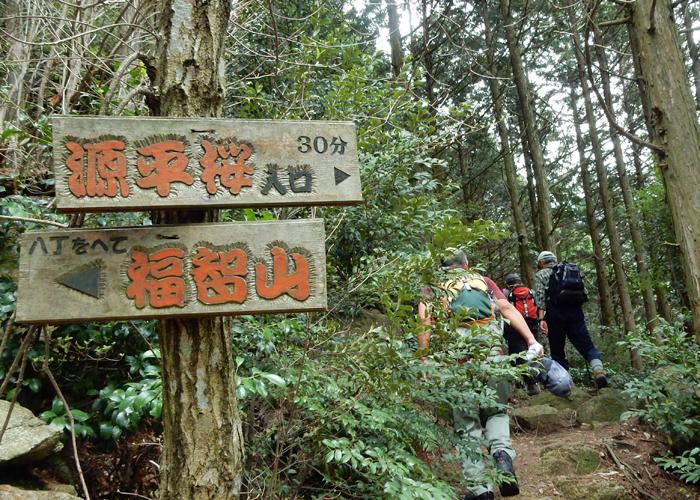 2016,4,3福智山-6