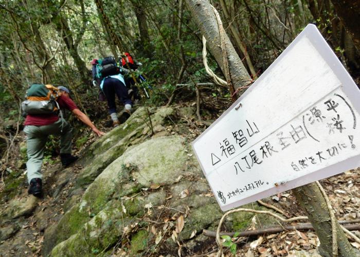 2016,4,3福智山-4